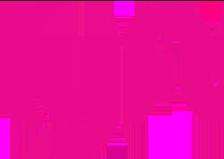 Future Festival Sponsor Lyft