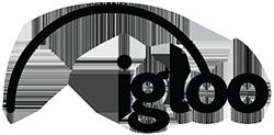 Future Festival Sponsor igloo