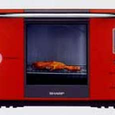 Steam Ovens-Reduce Fat and Salt Content