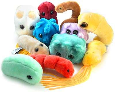 Bacteria Toys - Plush Microbes Teach Kids About Disease