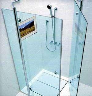 Shower TV