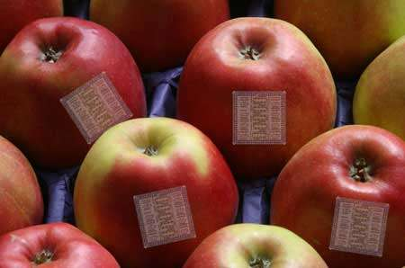 New Sticker Lets You Know When Fruit is Ripe