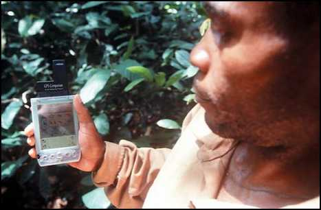 High-Tech Jungle - Pygmies Embrace GPS