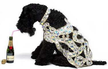 £2,500 Diamond Dog Coat