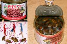 Curious Canned Culinary Treats - Exotic Goods Online