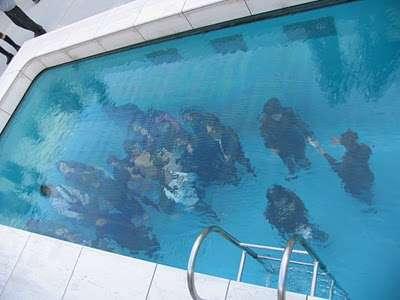 Illusionary Swimming Pools