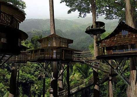 Towering Ewok Treehouses