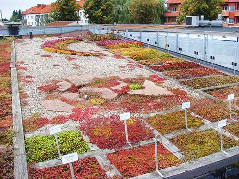 Spectacular Green Roofs