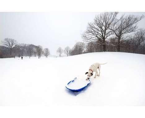 33 Breathtaking Winter Wonderlands