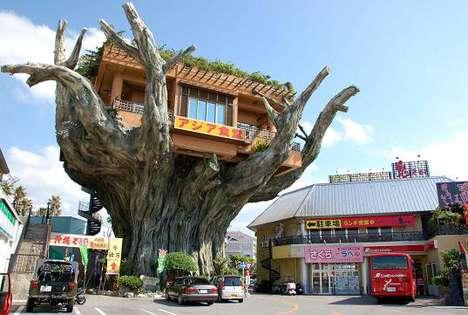 Amazing Treehouse Cafes