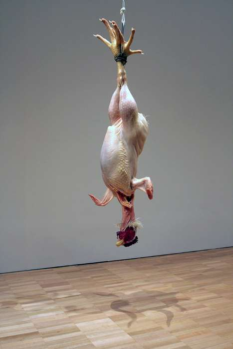 Hyperreal Hanging Chickens