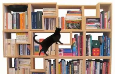 Feline-Friendly Bookshelves