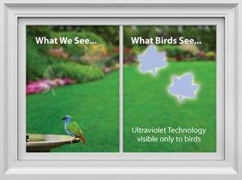 Avian-Alerting Decals - The WindowAlert Window Stickers Warn Birds to be Wary
