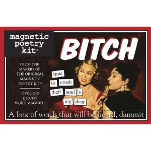 Snarky Fridge Stanzas - The Magnetic Poetry Bitch Kit Helps Release Your Inner Gripes