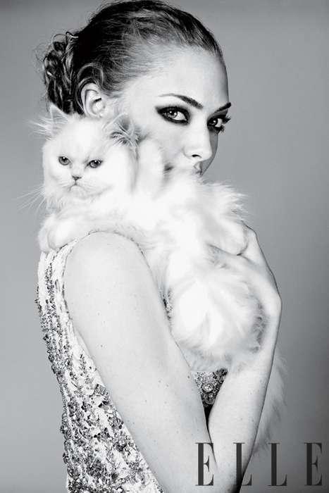Feline-Friendly Celebtography