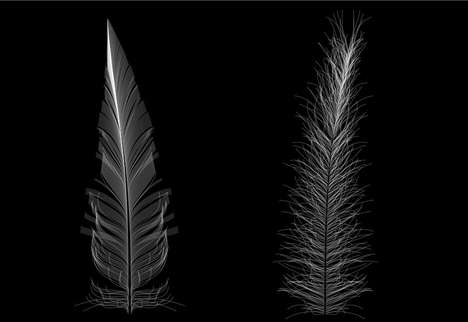 Feather-Building Sites