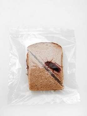 Thievery-Thwarting Sandwiches
