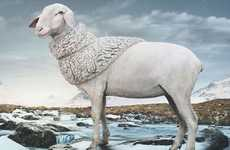 Shawl-Wearing Sheep Ads - This Pringle of Scotland Campaign Flaunts Its Ewe Producers
