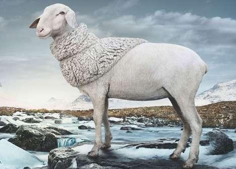 Shawl-Wearing Sheep Ads