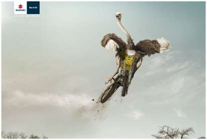 Fly Motorcycle Campaigns