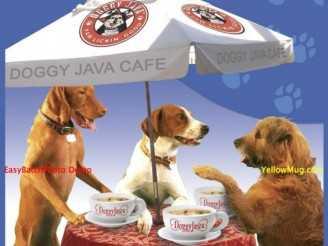 Canine Coffee