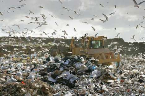 Personal Landfill Plots