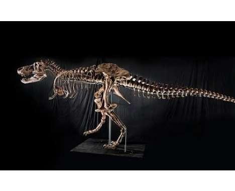 67 Dazzling Dinos