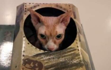 Feline Infantry Videos