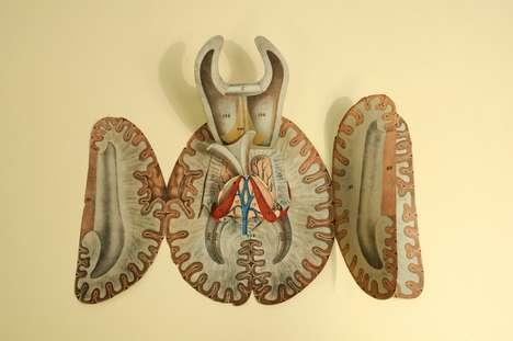 Anatomical Pop-Up Books