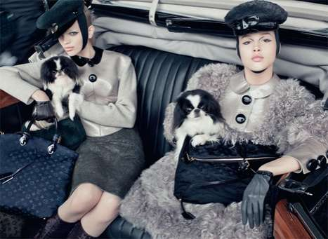 The Louis Vuitton Fall 2011 Campaign Features Adorable Puppies