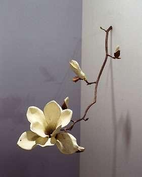 Fantastic Floral Recreations