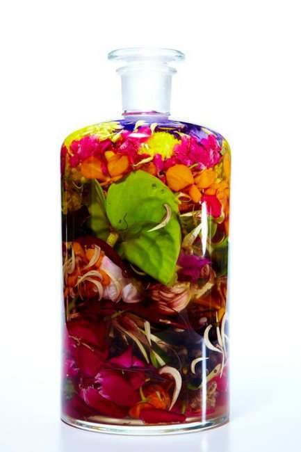 Bottled Botanical Art - Makoto Azuma Preserves Colorful Floral Plants in an Odd Way