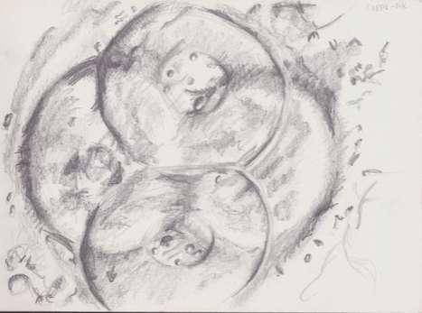 Embyronic Conception Art