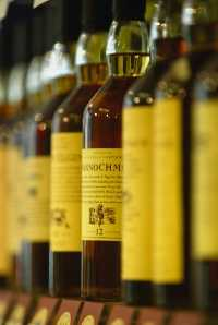 Whisky Fraud Rising