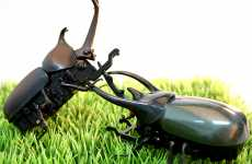 Remote Control Creepy Crawlers