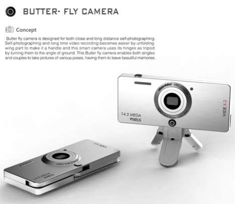 Insect-Inspired Cameras