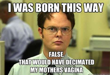 Disgruntled Employee Memes - The Schrute Facts Image Macro Falsifies the Facts of Life