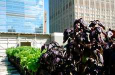 Pop-Up Farms - GrowNYC and Riverpark Restaurant Open an Urban Garden in the Middle of Manhattan