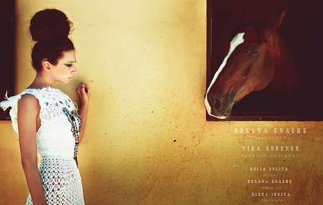 Elegant Equine Editorials