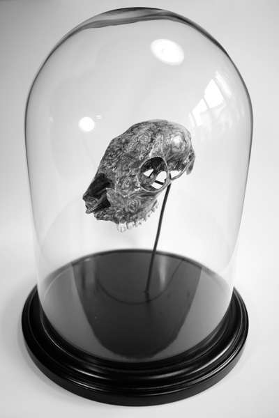 Botanic Skull Shows off the Incredible Skills of Jacob Dahlstrup