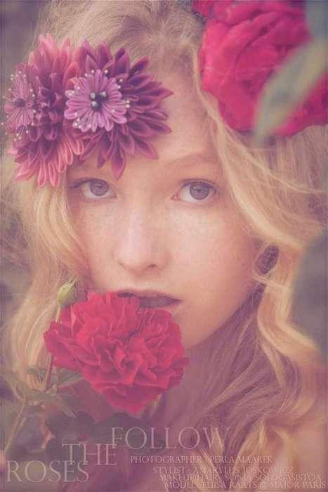 Sensual Rose-Hued Shoots