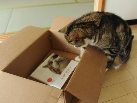 Film Star Feline Hardcovers