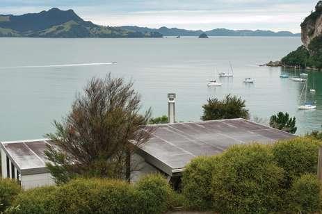 Kiwi Countryside Pads