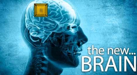 Virtual Brains