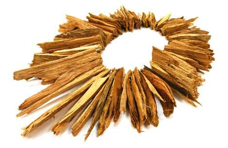 Raw Material Adornments - Edgar Mosa Favors Natural Woods When Creating His Eco Jewelry