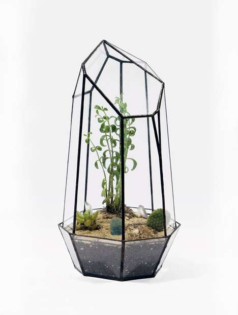 Geodesic Terrariums Get Your Plants Growing in Style