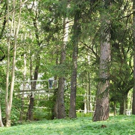 Winding Woods Walkways