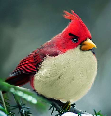 Mohamed Raoof Injects a Realistic Look into the Angry Birds