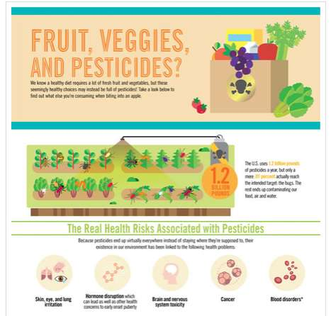 The Fruit Veggies and Pesticides Infographic Examines the Food We Eat
