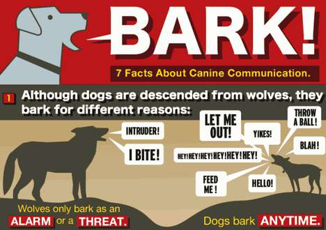 'Bark! 7 Facts About Canine Communication' Sets the Tale Straight